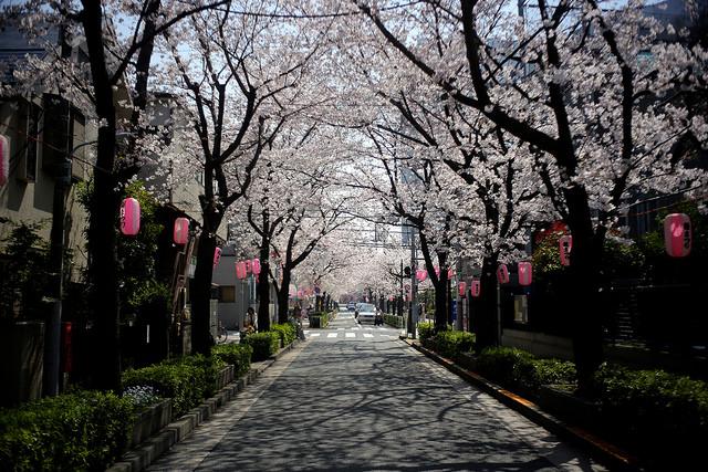 3/29(火)特別営業のお知らせ