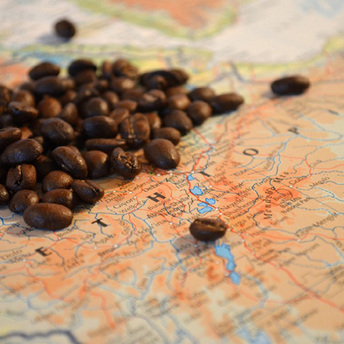 新豆発売のお知らせ:エチオピア アッビ ナチュラル シティロースト